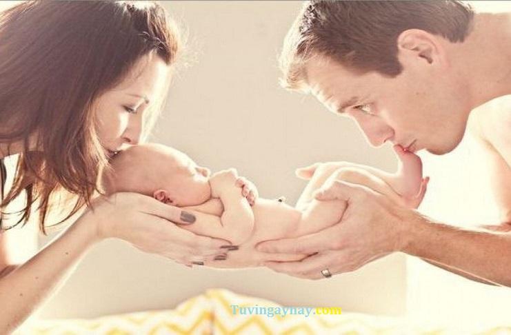 Chồng Bính Tý 1996 vợ Quý Dậu 1993 sinh con năm nào tốt, hợp tuổi?
