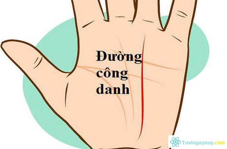 Xem tướng 5 đường chỉ tay quan trọng nhất trong lòng bàn tay