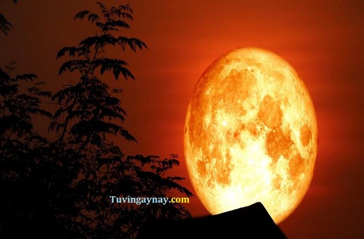 Hiện tượng siêu trăng tròn tháng 6 tạo bước ngoặt nào cho 12 chòm sao?