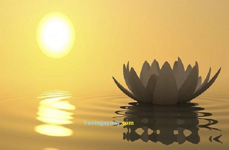 Lời Phật dạy về 7 chữ Học giúp cuộc đời bình an, cân bằng trong tâm hồn